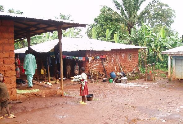 Village Life in the Bush